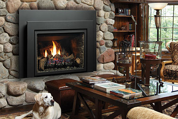 Image Result For What Can You Burn In A Fireplacea